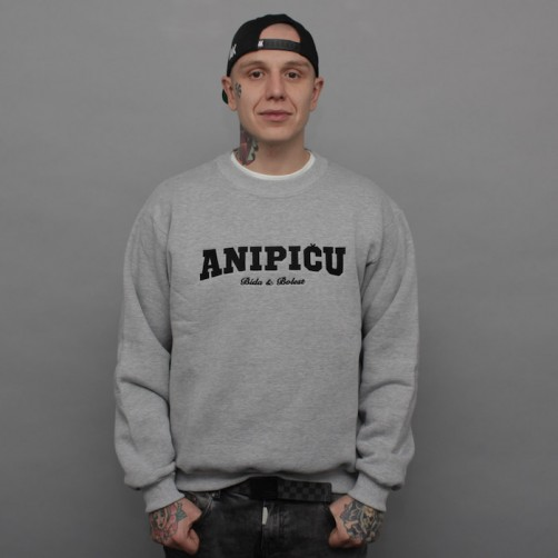 ANIPIČU, BE crewneck, grey